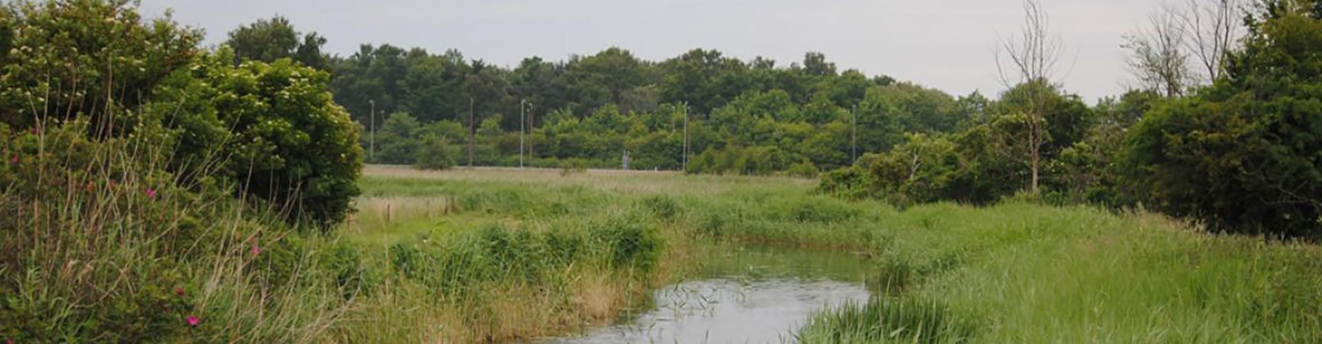 landsbyer-banner